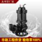 用污水泵 生活污